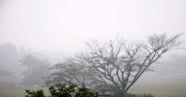 কুয়াশাসিক্ত ঢাকা